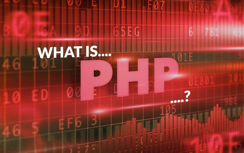 What is 'PHP'? The foundation of how WordPress works.