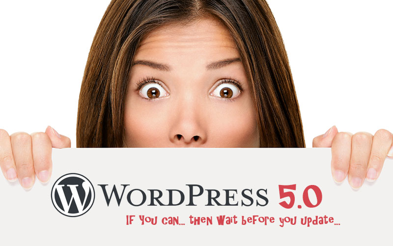 WordPress 5.0 - Wait, if you can, before you update!